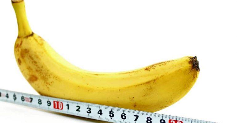 tamanho do pênis